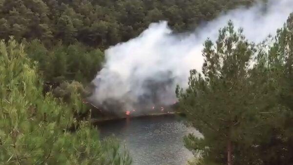 Samsun'un Bafra ilçesinde sorumsuz piknikçiler ormanlık alanda yangın çıkardı - Sputnik Türkiye