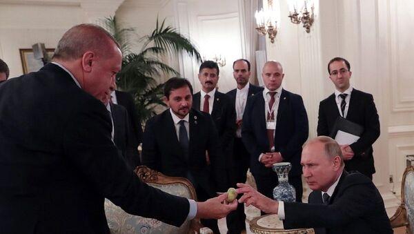 Erdoğan'ın liderler incir ikram ettiği anlar objektiflere böyle yansıdı. - Sputnik Türkiye