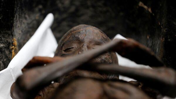 Antik Mısır'da Yeni Krallık döneminde yaşayan üst düzey görevli Sennedjem ve eşine ait olduğu düşünülen, çok iyi korunmuş durumda bulunan mumyalar Kahire'de Mısır Medeniyetleri Ulusal Müzesi'nde görücüye çıktı. - Sputnik Türkiye