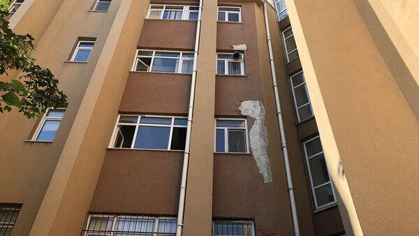 İstanbul Üniversitesi Veteriner Fakültesi  - Sputnik Türkiye