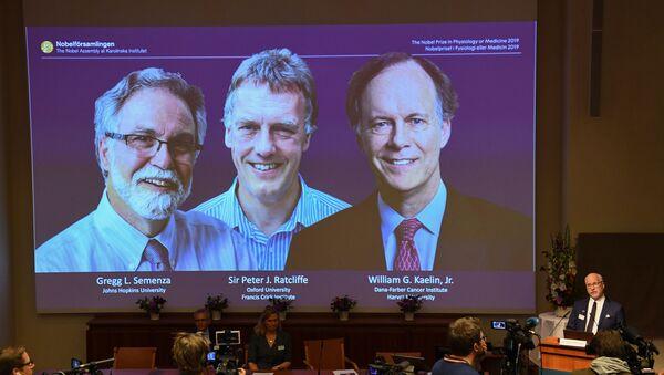2019 Nobel Fizyoloji veya Tıp Ödülü,  William Kaelin Jr, Sir Peter Ratcliffe ve Gregg Semenza'nın oldu.  - Sputnik Türkiye