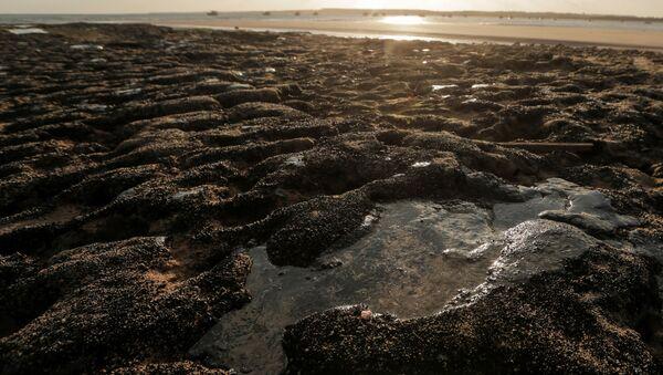 Brezilya'nın kuzeydoğu kıyılarında eylül ayının başından beri devam eden petrol sızıntısı - Sputnik Türkiye