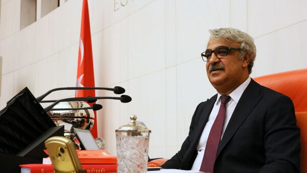 TBMM Başkanvekili Mithat Sancar - Sputnik Türkiye