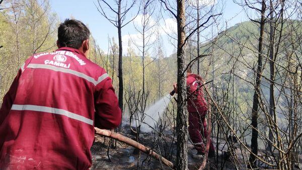 Denizli'de orman yangını - Sputnik Türkiye