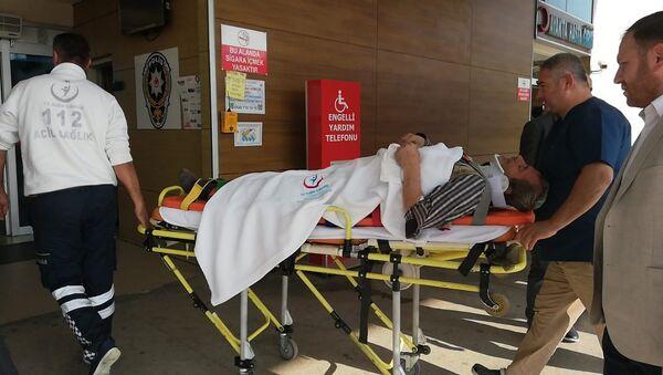 Kestiği ağacın altında kalan adam yaralandı - Sputnik Türkiye