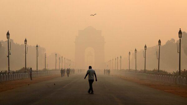 Hindistan'daki hava kirliliği - Sputnik Türkiye