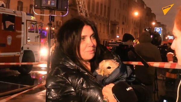 İtfaiyeciler, yanan sekiz katlı binadan bir baykuşu kurtardılar - Sputnik Türkiye