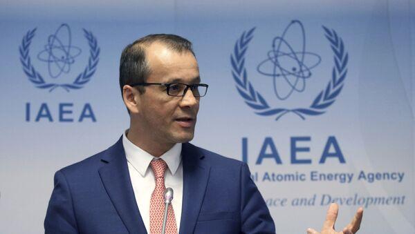 Uluslararası Atom Enerjisi Ajansı (UAEA) geçici Başkanı Cornel Feruta - Sputnik Türkiye