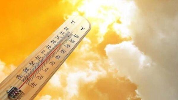 Termometre - Sputnik Türkiye