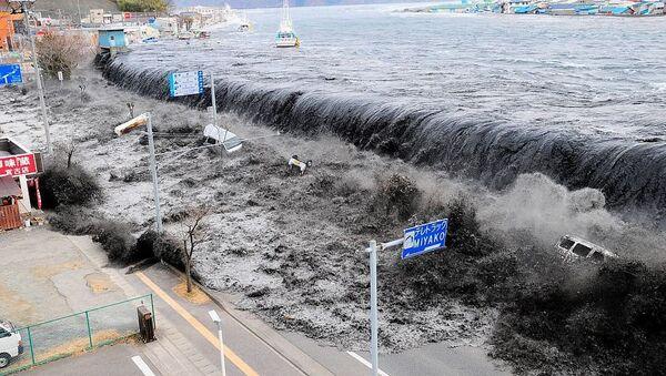 Devasa dalga 11 Mart 2011'de Japonya'nın Miyako bölgesinde 9 büyüklüğündeki depremin ardından meydana geldi.  Deprem ülke tarihine en güçlü dördüncü deprem olarak geçti. Deprem sonrası yaşanan tsunami ise Fukuşima Nükleer Santrali faciasına sebep oldu.  Nükleer kaza 1986 yılındaki Çernobil felaketinden sonra en etkili nükleer kaza olarak kayıtlara geçti. - Sputnik Türkiye