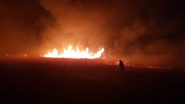 İznik Gölü, yangın - Sputnik Türkiye