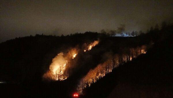 Trabzon, Maçka, örtü yangını - Sputnik Türkiye