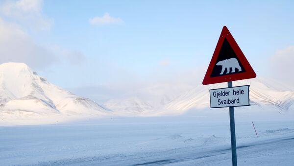 Norveç trafik tabelası - Sputnik Türkiye
