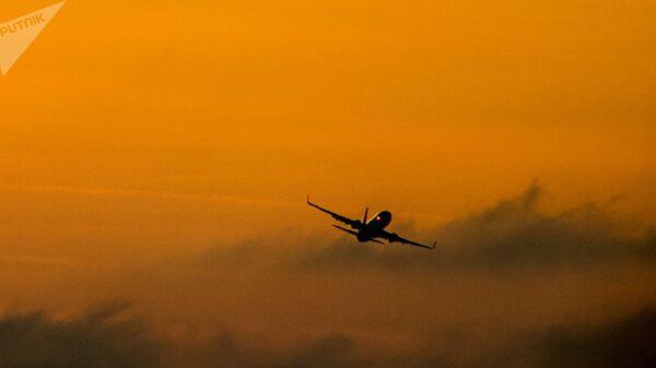 Yolcu uçağı - Sputnik Türkiye