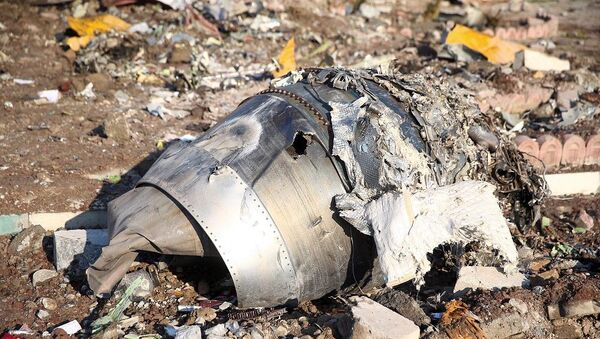 Tahran'da düşen Ukrayna Havayolları'na ait uçağı enkazı - Sputnik Türkiye