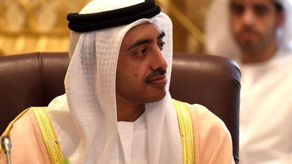 Birleşik Arap Emirlikleri (BAE) Dışişleri Bakanı Abdullah bin Zayid - Sputnik Türkiye
