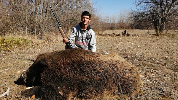 1 ay takip etti, 300 kiloluk yaban domuzunu vurdu - Sputnik Türkiye