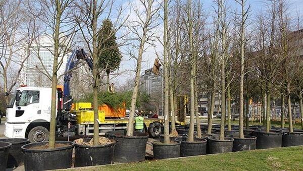 Gezi Parkı'na 150 yeni ağaç dikiliyor - Sputnik Türkiye
