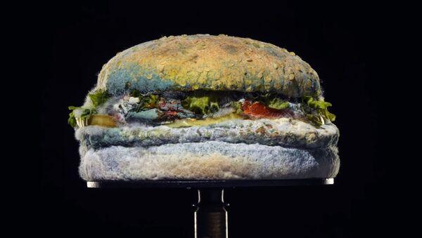 Küflü Whopper, Burger King - Sputnik Türkiye