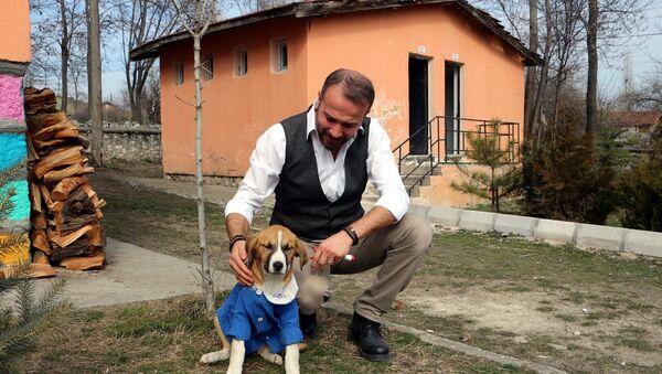 Sosyal medyada fenomen olan 'Fındık' - Sputnik Türkiye