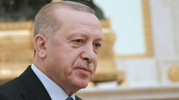 Cumhurbaşkanı Recep Tayyip Erdoğan Rusya Devlet Başkanı Vladimir Putin ile görüşmesi sırasında. - Sputnik Türkiye
