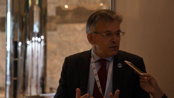 Dünya Nükleer Derneği (WNA) Kıdemli Danışmanı Philippe Costes - Sputnik Türkiye