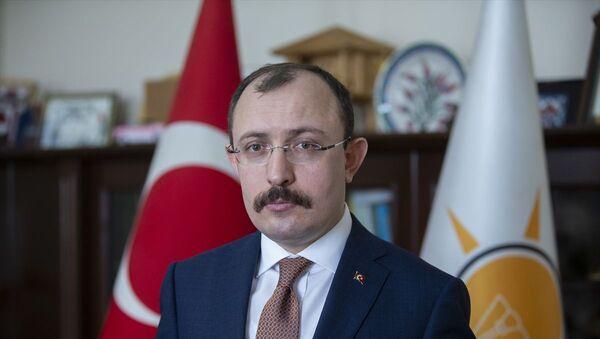 AK Parti Grup Başkanvekili Mehmet Muş - Sputnik Türkiye