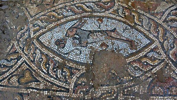 Antalya'nın Manavgat ilçesinde, tarihi Side Antik Kenti'nde koruma amaçlı imar planı kapsamında yapılan temel kazılarında Roma dönemine ait çeşitli hayvan figürlerinin yer aldığı mozaikler ve kilise kalıntısı bulundu. - Sputnik Türkiye