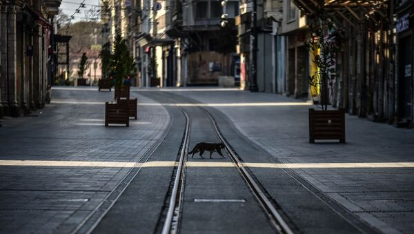 Yasak sonrası İstanbul'da cadde ve sokaklar boş kaldı - Sputnik Türkiye