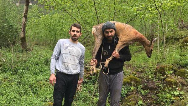 Yaralı karacayı sırtında eve taşıdı - Sputnik Türkiye