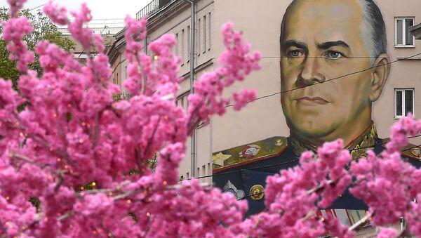 Rusya'da  Zafer Bayramı konulu grafitiler - Sputnik Türkiye