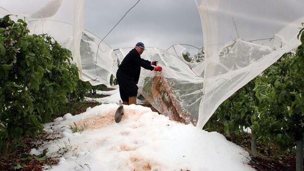 Mersin'de 2 gündür yağan dolu tarlalarda yüzde 100'e varan zarara neden oldu - Sputnik Türkiye