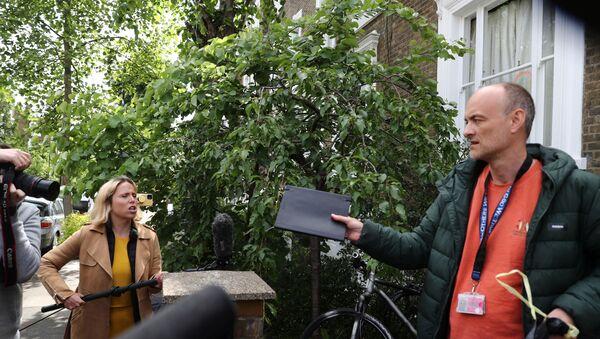 İngiltere Başbakanı Boris Johnson'ın Başdanışmanı Dominic Cummings - Sputnik Türkiye