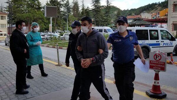 Sokak köpeğini tabancayla öldürdü, kovalamaca sonucu yakalandı  - Sputnik Türkiye