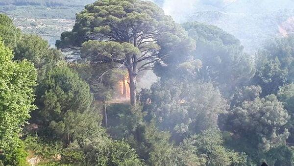 Kuşadası, orman yangını - Sputnik Türkiye