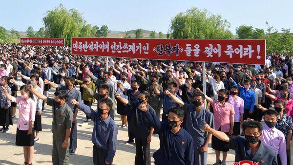 Kuzey Kore-tarım işçileri sendikası-Güney Kore karşıtı protesto - Sputnik Türkiye