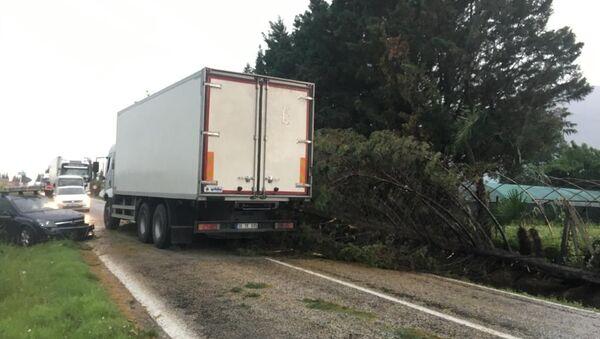 Bursa'nın Orhangazi ilçesinde fırtına yüzünden devrilen ağaçtan kaçmak isteyen kamyon, otomobile çarptı. Kazada 2 kişi yaralandı. - Sputnik Türkiye