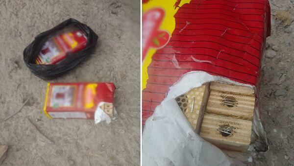 Amasya'da TIR'daki çay paketlerinden arı çıktı - Sputnik Türkiye